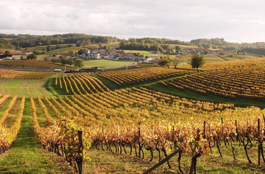 FranceRelance : le volet « Transition agricole, alimentation et forêt », par le ministère de l'Agriculture et de l'Alimentation