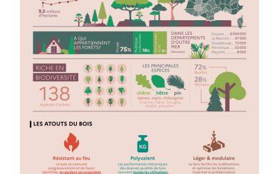 Les assises du bois et de la forêt lancées le 19 octobre 2021